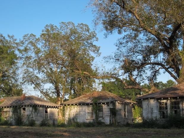 rusty the van - road trip - florida